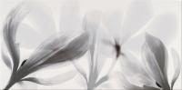 Opoczno dekorcsempe Opoczno Colorado Nights inserto flower dekorcsempe 29 x 59,3