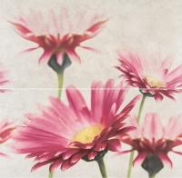 Opoczno dekorkép Opoczno Creamy Touch composition flower dekorkép 58 x 59,3